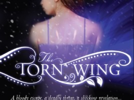 torn wing